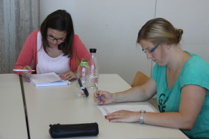 Esslingen student advisors fill in the Delphi Questionnaire